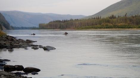 Yukon2 Day 4 (80)