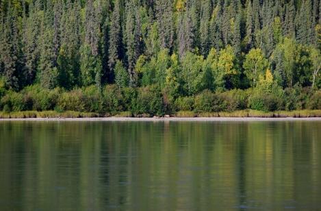 Yukon2 Day 6 (1)